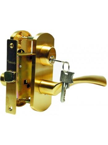 Дверная ручка T111-X11I-V1